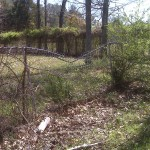 Chain Link Fence Repairs Storm Damage