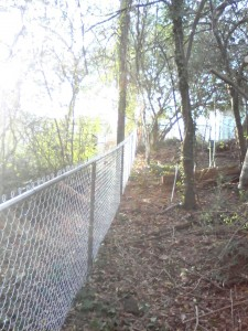 fence repair in woods complete