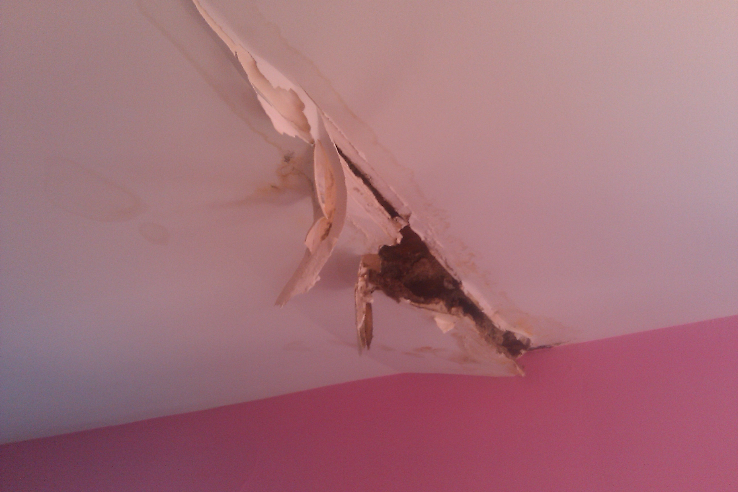 Water Damaged Drywall Ceiling